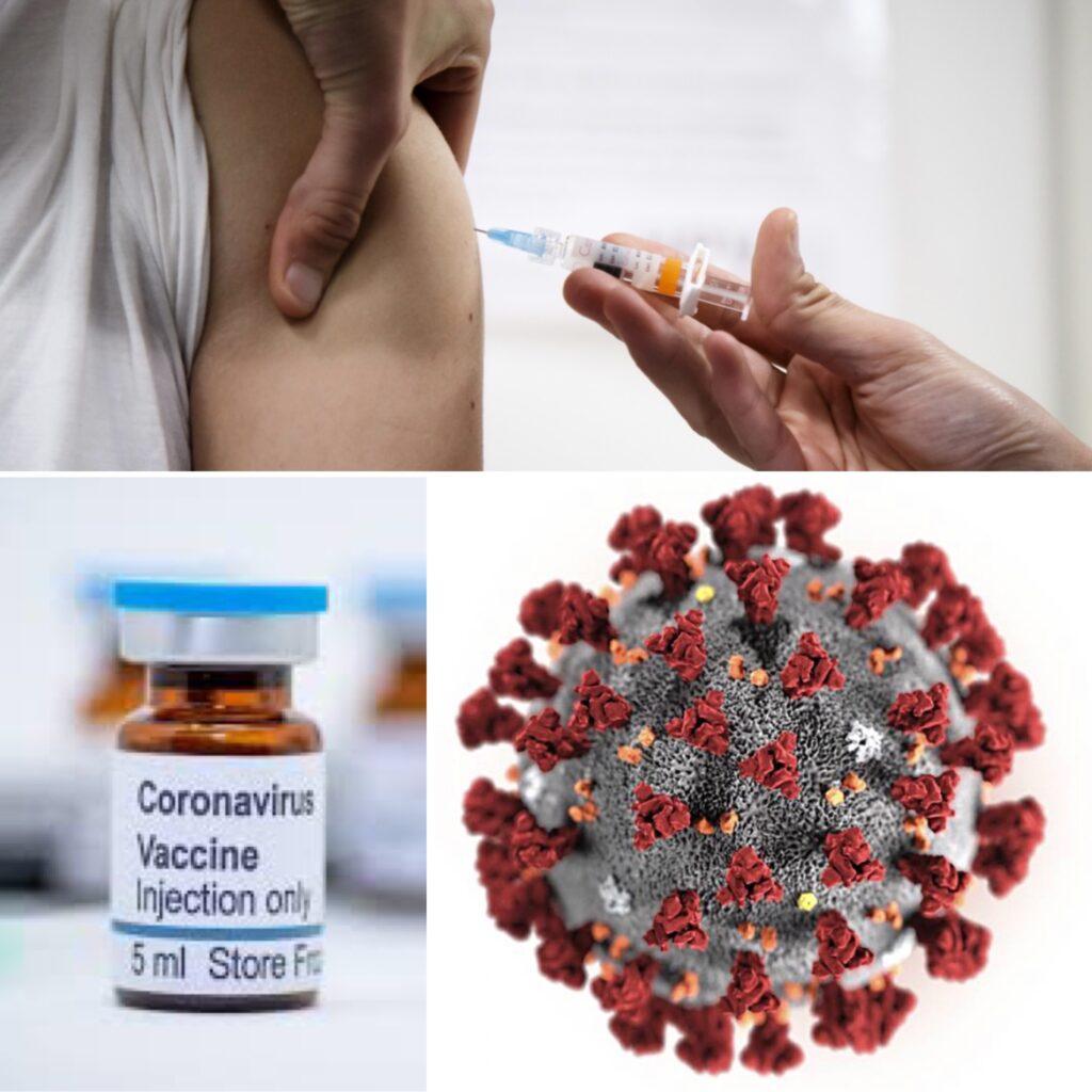 Hur fungerar coronavaccinet? Dr Lena Catry, disputerad i virusimmunologi förklarar.