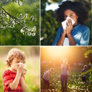Pollenallergi hos Barn